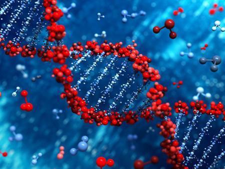 مشخصه یابی ژنوم در رشته DNA با ترکیب سه فناوری محقق شد