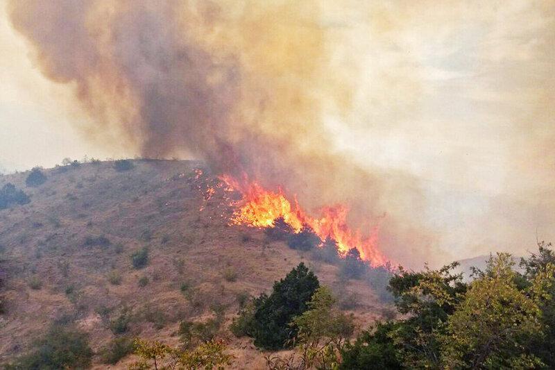 حیات وحش سمنان در آتش سوزی مراتع تلفاتی نداشت