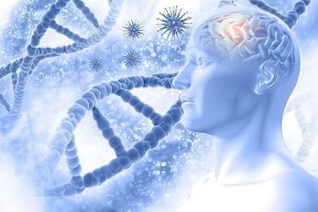 ژن زوال عقل ریسک ابتلا به بیماری کووید 19 را افزایش می دهد