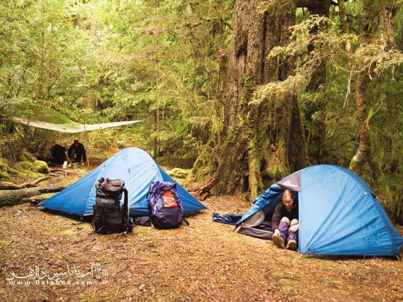 چگونه در کمپ راحت تر بخوابیم؟