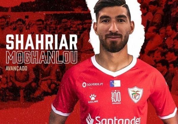 واکنش باشگاه پرسپولیس به مذاکره با شهریار مغانلو