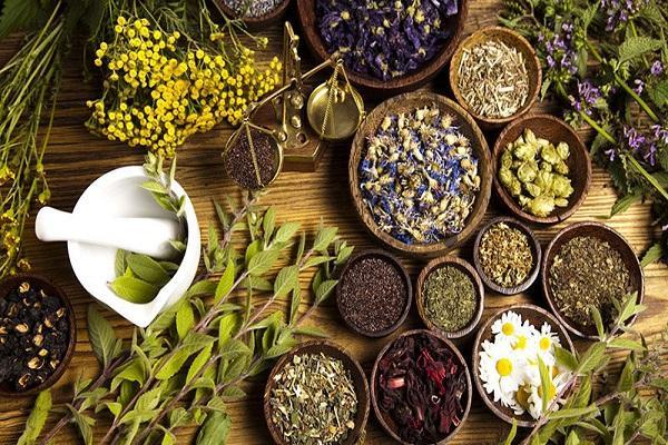 درمان سوء هاضمه با گیاهان دارویی